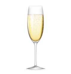 glass champagne vector image