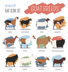 Goat breeds icon set animal farming flat design vector