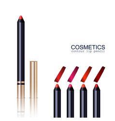 lip pencil set vector image vector image
