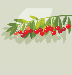 rape cherry fruit simple flat design element vector image