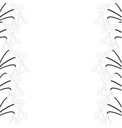 snowdrop border outline vector image