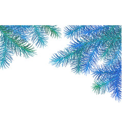 christmas spruce border vector image