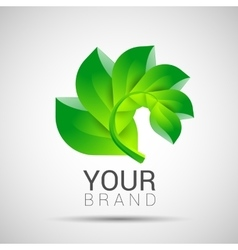 Environmental leaves branch logo eco vector image