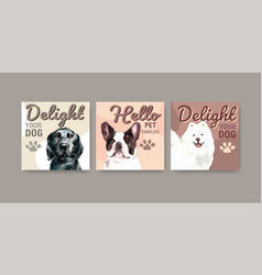 advertise template with dogs and food design vector image