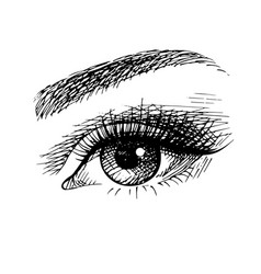 Beautiful female eye sketch vector
