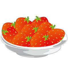 berry victoria in plate vector image