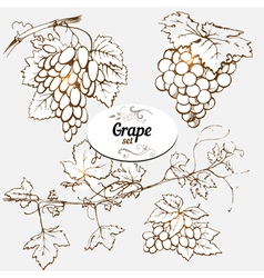 grape set vector image