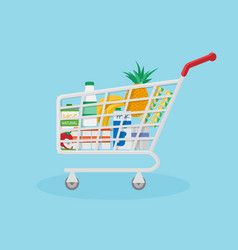 Red shopping basket filled with useful natural vector