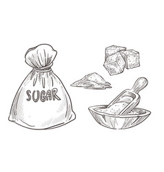 sugar stored in burlap bag and wooden bowl vector image