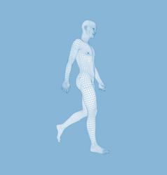 Walking man 3d human body model geometric design vector