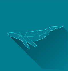 Whale wireframe vector
