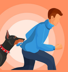 angry doberman holds man in teeth by sweater vector image