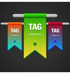 Flag Tag vector image vector image
