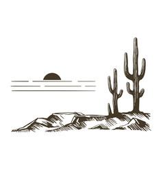 cacti in arizona vector image