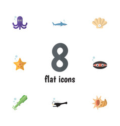 Flat icon nature set of octopus tentacle conch vector