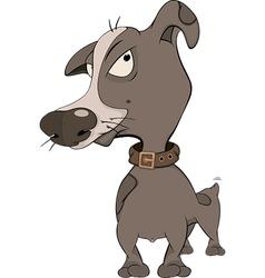 hunting dog cartoon vector image