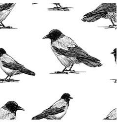 seamless background crows sketches vector image