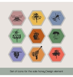 Set of icons for the sale honey 4 vector image