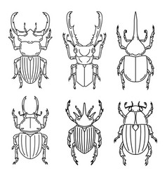 Set of insects isolated on white background vector