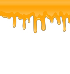 Texture of Sweet Honey Drips on White Background vector image