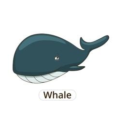 Whale sea animal fish cartoon vector image