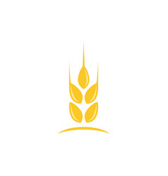 agriculture wheat logo template icon design vector image