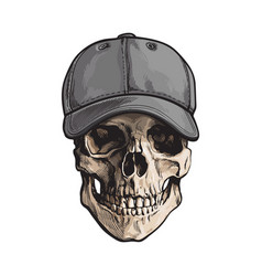 hand drawn human skull wearing grey colored vector image