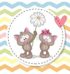 Greeting card with two Cats vector image vector image