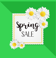 spring sale background with beautiful white vector image