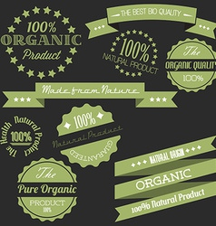 Old retro vintage elements for organic natural vector image