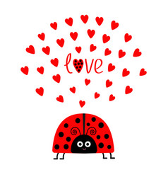 red lady bug insect with hearts cute cartoon vector image