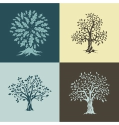 Beautiful oak trees silhouette vector image