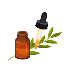 brown glass bottle of essential oil pipette with vector image