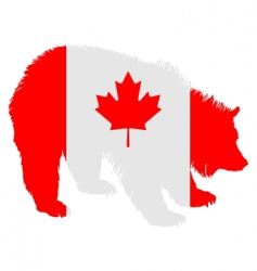 Canadian bear vector image