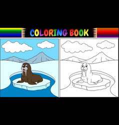 Coloring book with walrus cartoon vector