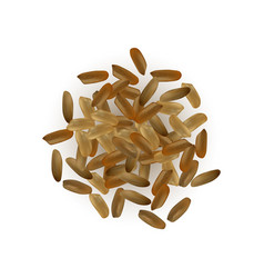 realistic rice isolated vector image