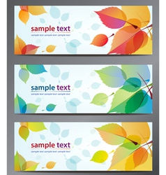 autumn leaves background brochure vector image vector image