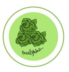 elegant rose logo for beauty salon modern green vector image