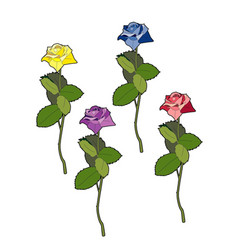Four different colored roses vector