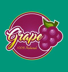 Grape design label vector