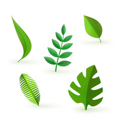 green leaves icon set vector image vector image
