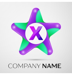 Letter X logo symbol in the colorful star on grey vector