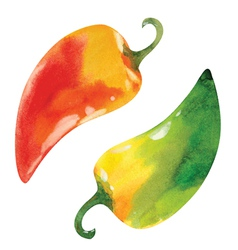 red and green peppers vector image