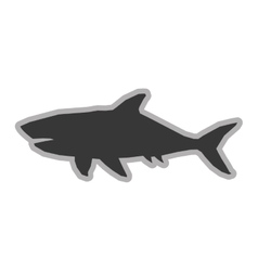 shark silhouette icon vector image