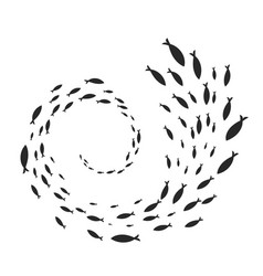 Spiral of fish shoal vector