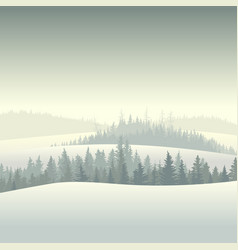 Winter coniferous forest in the morning vector