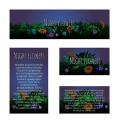 Four magic cards with floral ornament vector image vector image
