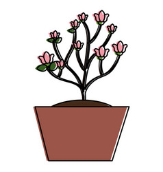 beautiful house plant icon vector image