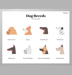 dog breeds icons flat pack vector image