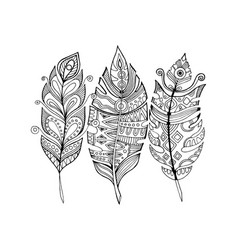 Feathers coloring book vector